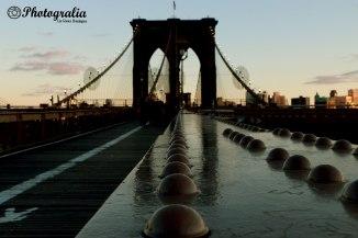 Puente de Brooklyn (I)