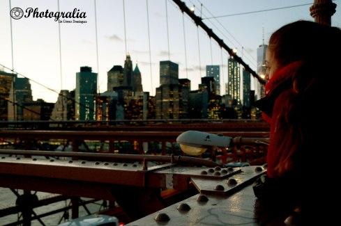Puente del Brooklyn (II)